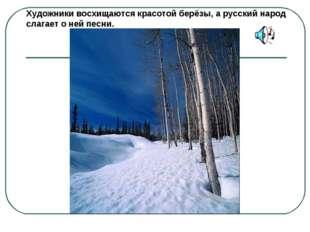 Художники восхищаются красотой берёзы, а русский народ слагает о ней песни.