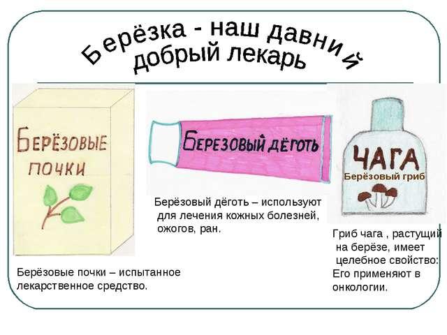 Берёзовый гриб Берёзовый дёготь – используют для лечения кожных болезней, ожо...