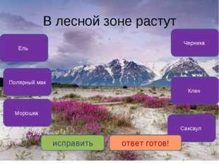 В лесной зоне растут Ель Черника Клен Морошка Полярный мак Саксаул исправить