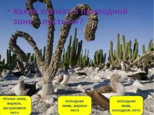 Какой климат в природной зоне – пустыня? тёплая зима, жаркое, засушливое лето