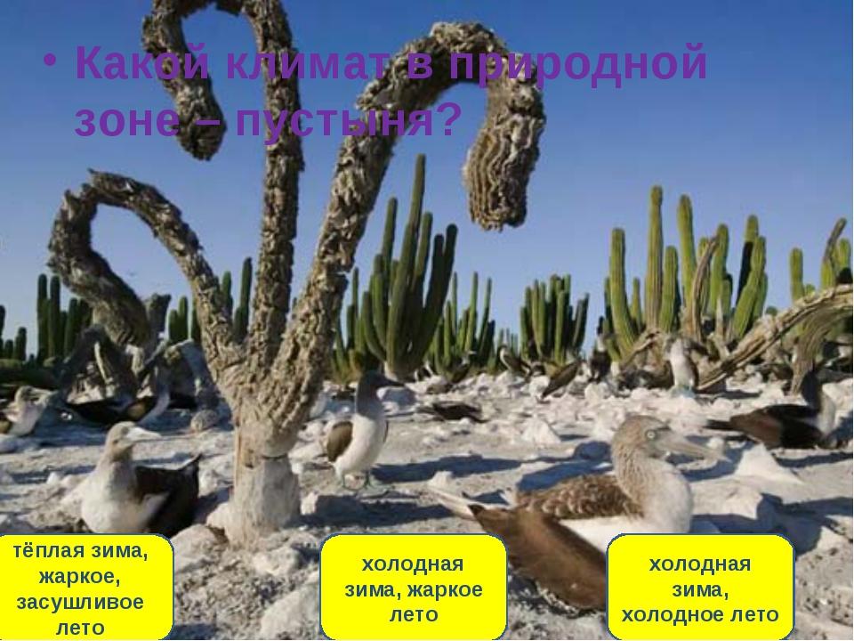 Какой климат в природной зоне – пустыня? тёплая зима, жаркое, засушливое лето...