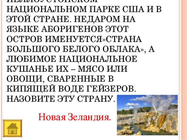 ДОЛИНУ ГЕЙЗЕРОВ МОЖНО УВИДЕТЬ НА КАМЧАТКЕ, В ИСЛАНДИИ, В ЙЕЛЛОУСТОНСКОМ НАЦИ...