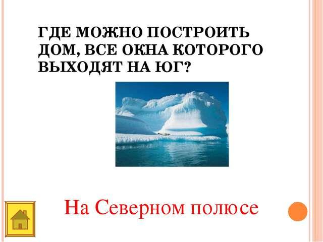 ГДЕ МОЖНО ПОСТРОИТЬ ДОМ, ВСЕ ОКНА КОТОРОГО ВЫХОДЯТ НА ЮГ? На Северном полюсе