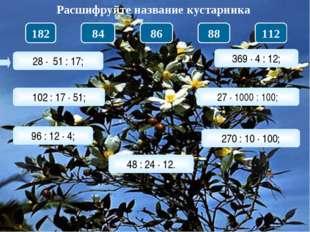 28 · 51 : 17; Расшифруйте название кустарника 102 : 17 · 51; 96 : 12 · 4; 48