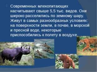 Современных млекопитающих насчитывают свыше 5,5 тыс. видов. Они широко рассе
