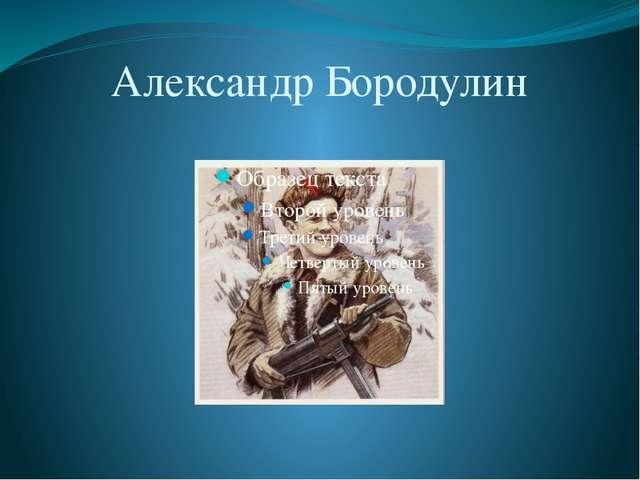 Александр Бородулин