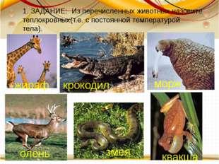 1. ЗАДАНИЕ: Из перечисленных животных назовите теплокровных(т.е. с постоянн