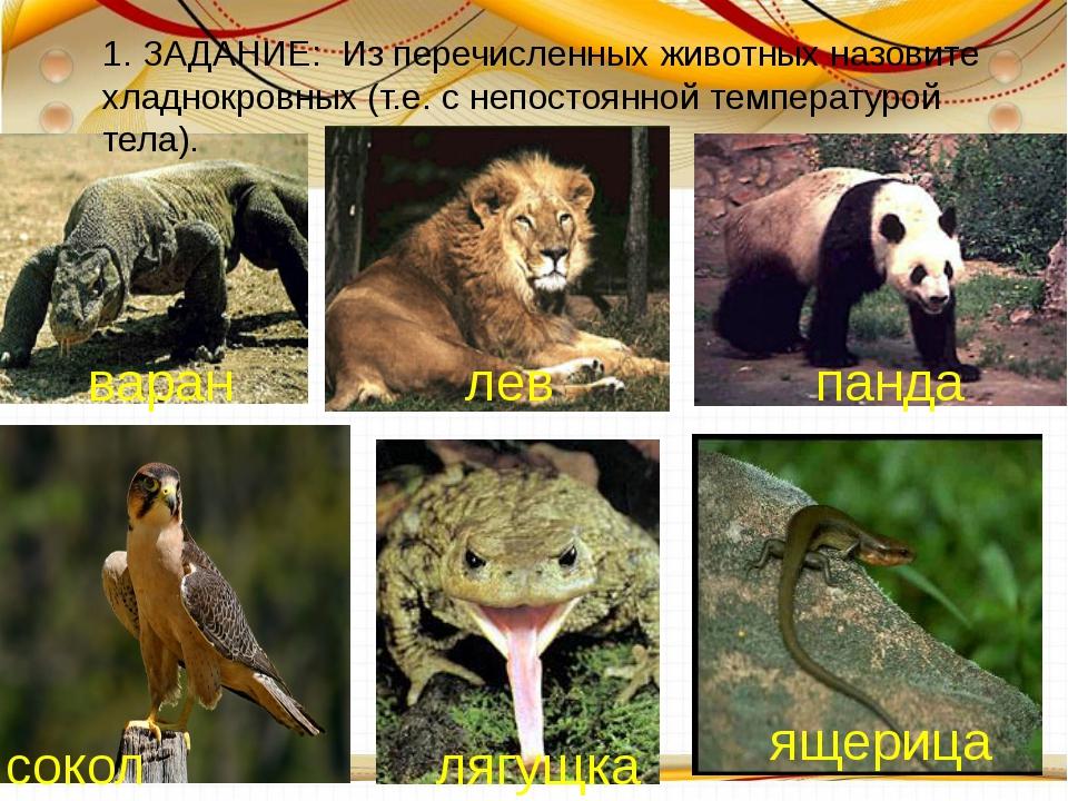 1. ЗАДАНИЕ: Из перечисленных животных назовите хладнокровных (т.е. с непосто...