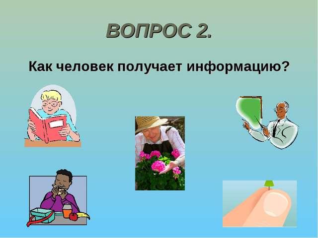 ВОПРОС 2. Как человек получает информацию?