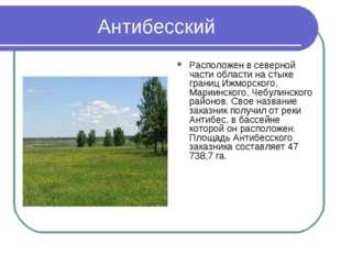 Антибесский Расположен в северной части области на стыке границ Ижморского, М