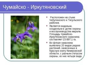 Чумайско - Иркутяновский Расположен на стыке Чебулинского и Тисульского район