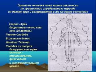 Организм человека тоже живет циклически по прошествии определенного периода о