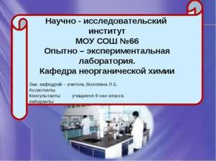 Научно - исследовательский институт МОУ СОШ №66 Опытно – экспериментальная ла
