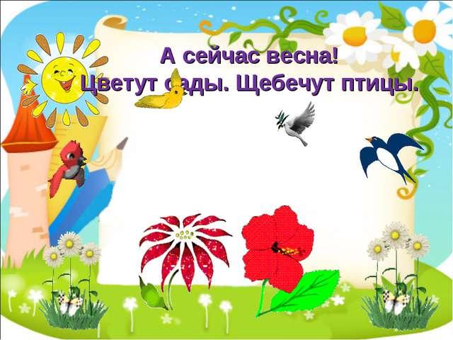 А сейчас весна! Цветут сады. Щебечут птицы.