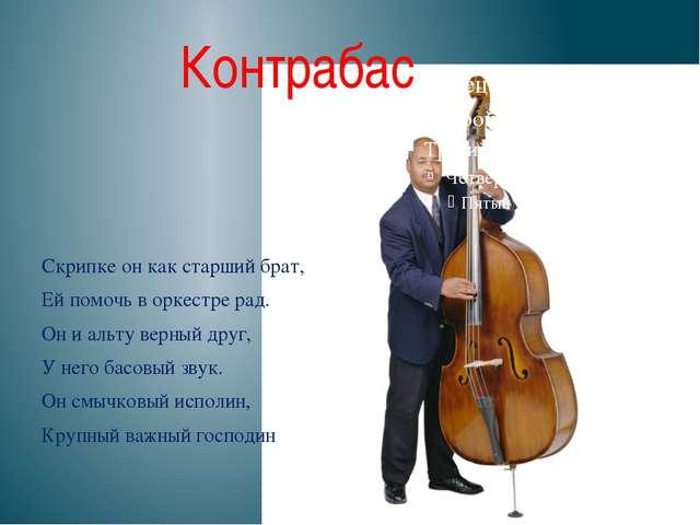 Контрабас  Скрипке он как старший брат, Ей помочь в оркестре рад. Он и альту...