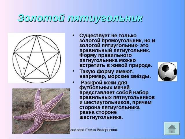 Золотой пятиугольник Существует не только золотой прямоугольник, но и золотой...