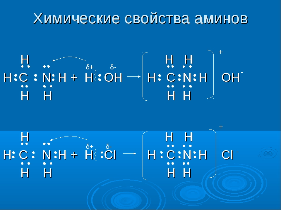 Химические свойства аминов δ+ δ- - H H H H C N H + H OH H C N H OH H H H H +...