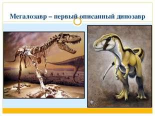 Мегалозавр – первый описанный динозавр