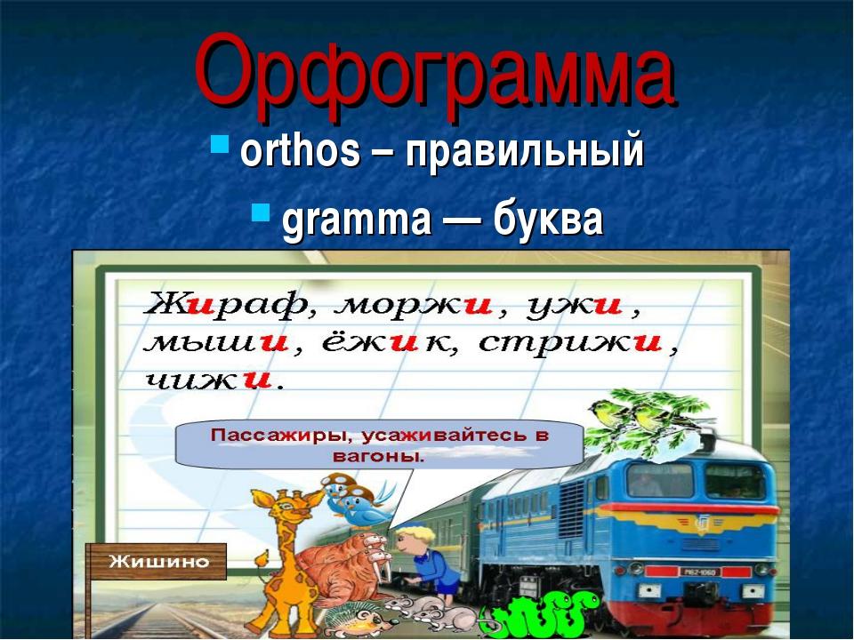 Орфограмма orthos – правильный gramma — буква