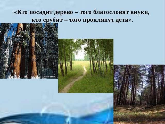 «Кто посадит дерево – того благословят внуки, кто срубит – того проклянут дет...