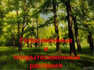 Голосеменные и покрытосеменные растения Саратовской области
