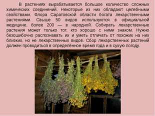 В растениях вырабатывается большое количество сложных химических соединений.