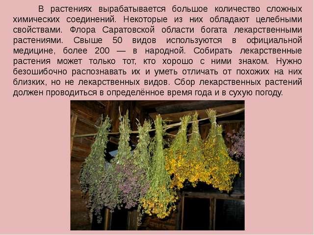 В растениях вырабатывается большое количество сложных химических соединений....