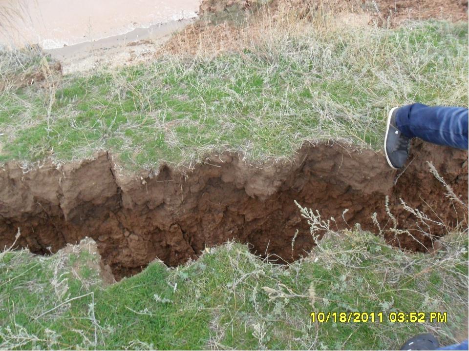 Во время сильного ливня потоки воды смывают верхний почвенный слой и располож...