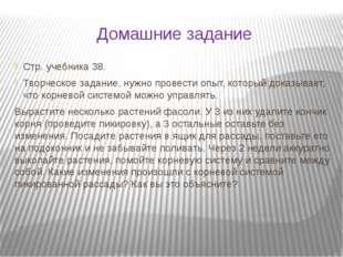 Домашние задание Стр. учебника 38. Творческое задание, нужно провести опыт, к