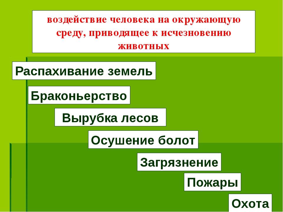 Вырубка лесов Браконьерство Охота Распахивание земель Осушение болот Загрязне...