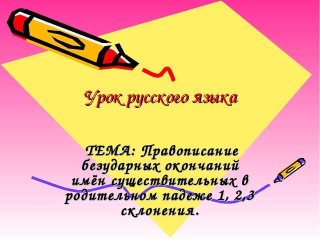Урок русского языка ТЕМА: Правописание безударных окончаний имён существитель...
