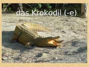 das Krokodil (-e)