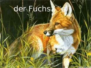 der Fuchs ( ¨e)