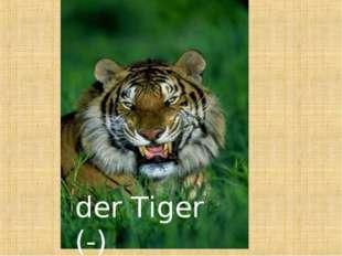 der Tiger (-)
