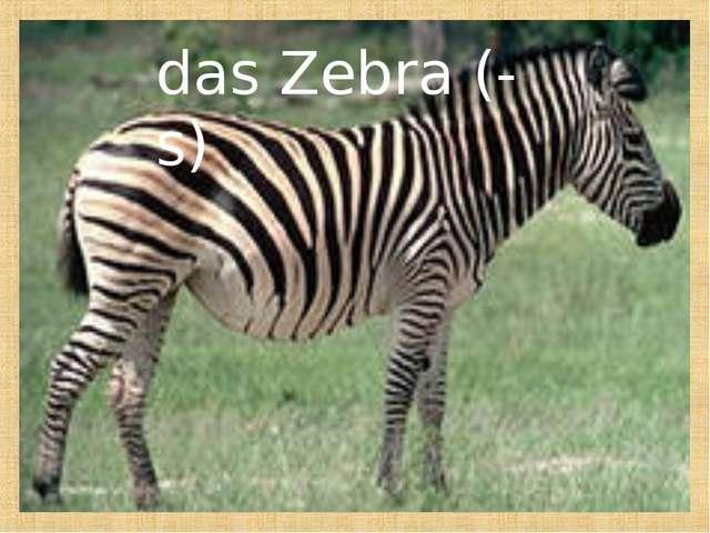 das Zebra (-s)