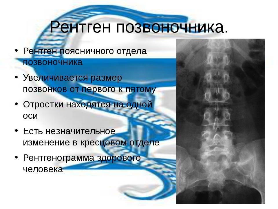 Рентген позвоночника. Рентген поясничного отдела позвоночника Увеличивается р...