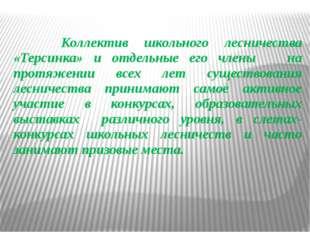 Коллектив школьного лесничества «Терсинка» и отдельные его члены на протяжен