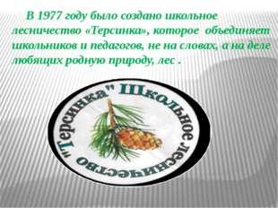 В 1977 году было создано школьное лесничество «Терсинка», которое объединяет