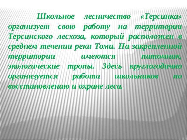 Школьное лесничество «Терсинка» организует свою работу на территории Терсинс...