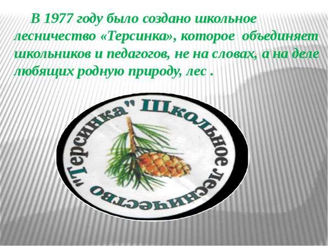 В 1977 году было создано школьное лесничество «Терсинка», которое объединяет...