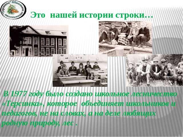 Это нашей истории строки… В 1977 году было создано школьное лесничество «Терс...