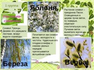 1 группа Растения-символы Почитается как символ весны, молодости и чистоты.