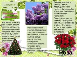1 группа Растения-символы Символ- красоты и любви. Цветок посвящали богам: г