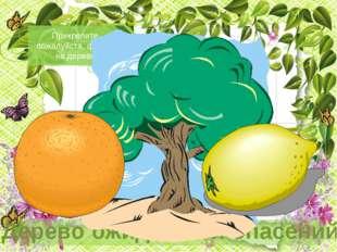 На апельсинах напишите, что Вы ждете от урока. На лимоне напишите, чего вы бо