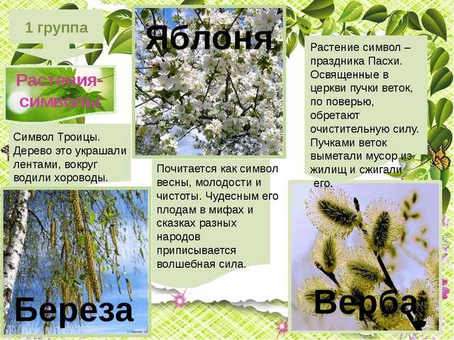 1 группа Растения-символы Почитается как символ весны, молодости и чистоты....