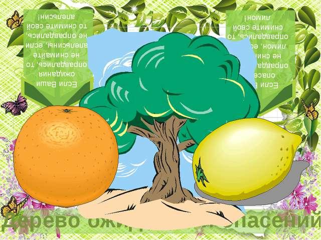 На апельсинах было написано, что Вы ждете от урока. На лимоне было написано,...