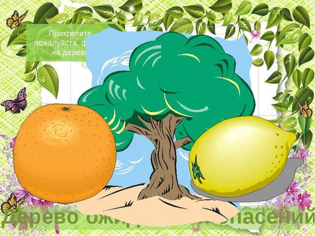 На апельсинах напишите, что Вы ждете от урока. На лимоне напишите, чего вы бо...