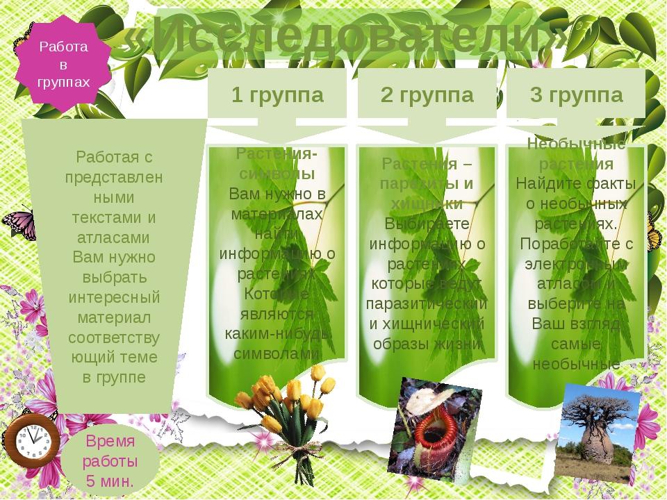 Работа в группах «Исследователи» 1 группа 2 группа 3 группа Растения-символы...