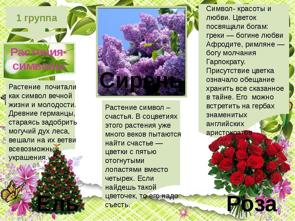 1 группа Растения-символы Символ- красоты и любви. Цветок посвящали богам: г...