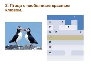 2. Птица с необычным красным клювом. 5 А 3 Р 4 К 2 6 Т И К А